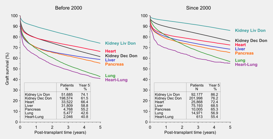 Graph: comparison of graft survival rates in two transplant periods